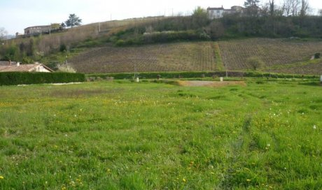 Terrain constructible Lantignié 654 m² - 63 000 €